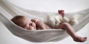 uyuyan bebek hayvan sevgisi kedi yapılan hatalar çocuk büyütmek hamak